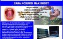 AGEN DISTRIBUTOR RESMI MAXIMAX JUAL MAXIBOOST | MAXXLIM | MAXCYPRESS DAN MAXIBEAU DI  SULAWESI TENGAH